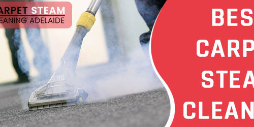 Carpet Steam Cleaning Adelaide 1
