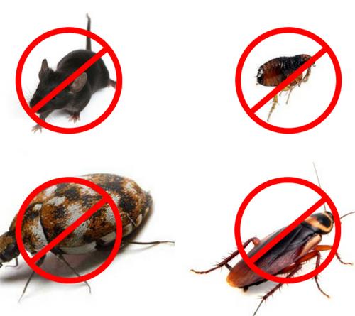 Pest Control 1180x445