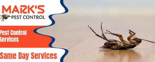 Professional Pest Control Services 1
