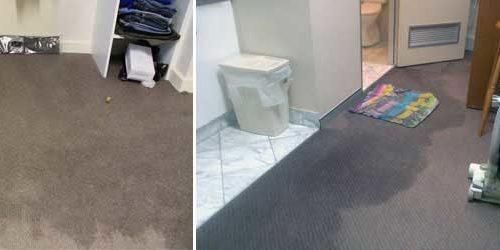 Wet Carpet Drying Melbourne 2