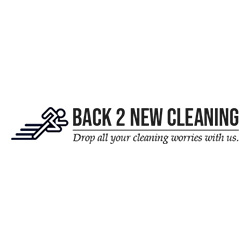 Back2new Cleaning Logo 250 4