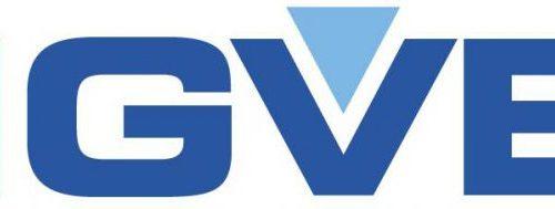 Bigvee Logo