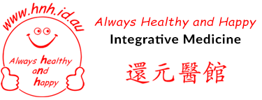 Hnh Logo With Chinese Name